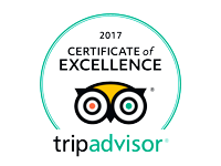 tripadvisor my best tour